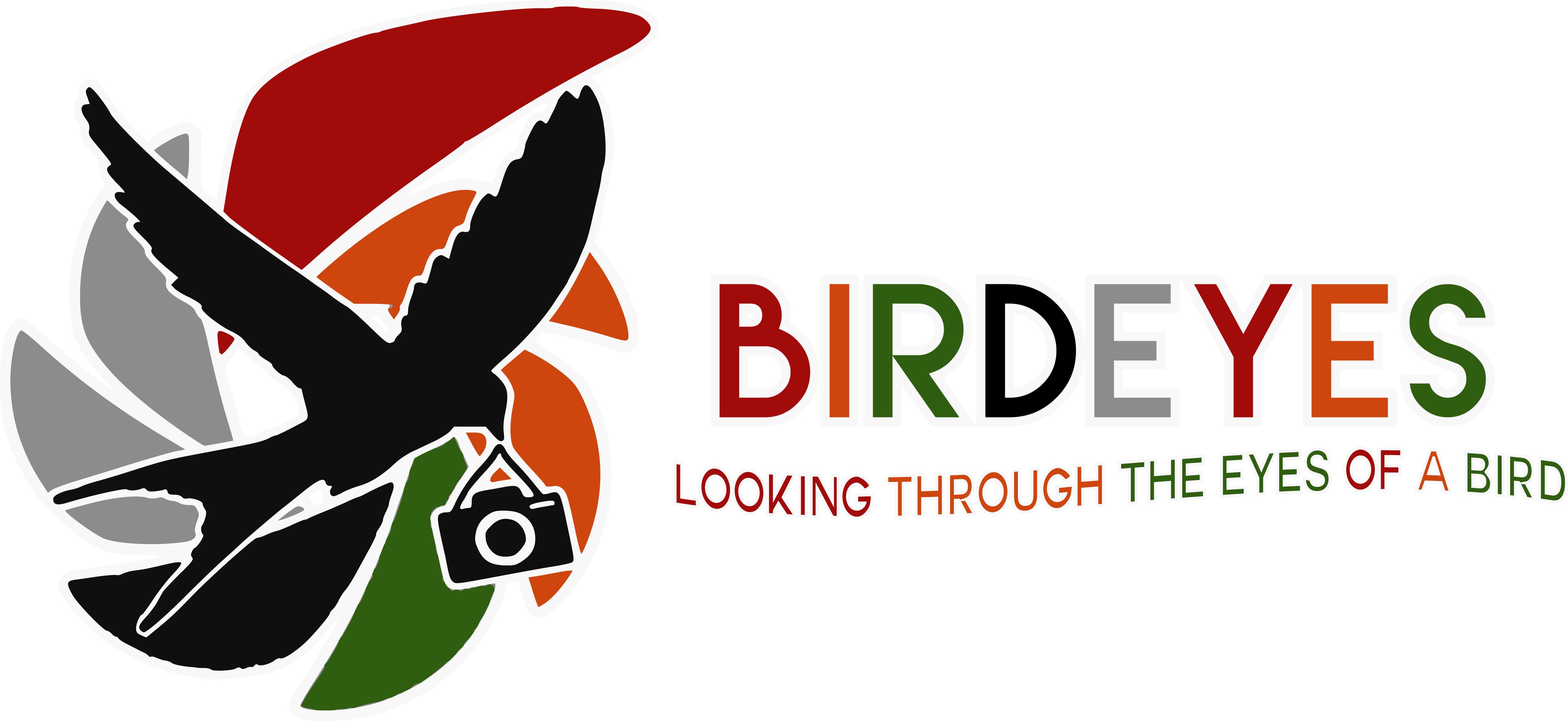 Birdeyes